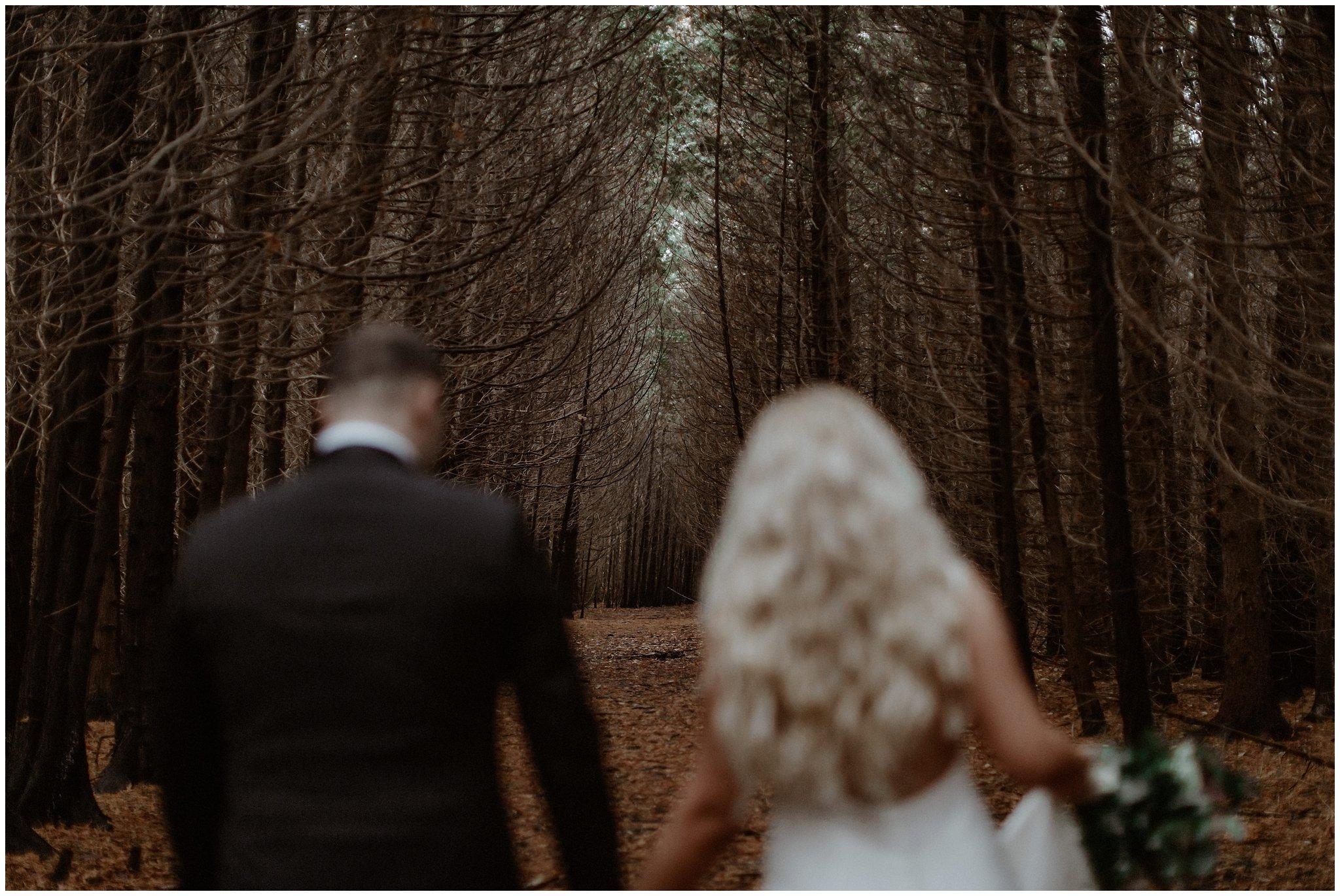 georgina ontario couple forest lake autumn photography engagement